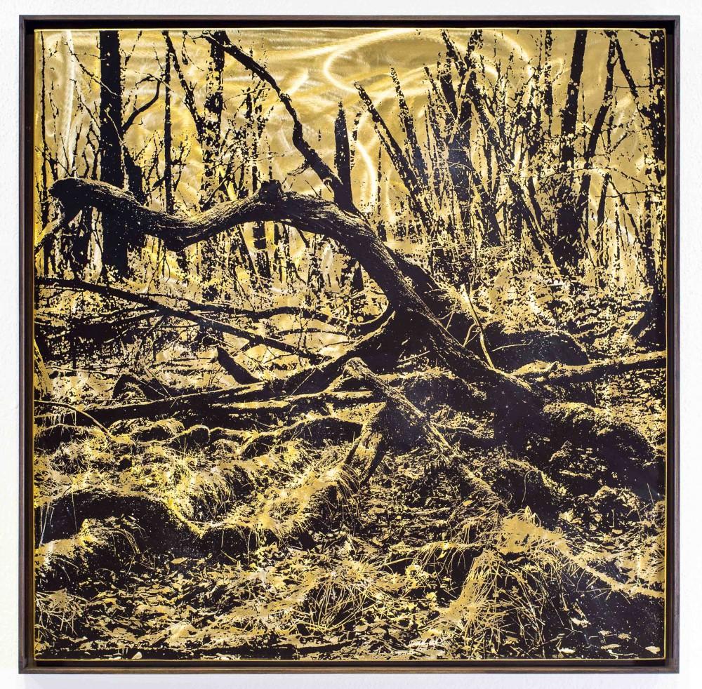 Überwachsen, 2015, 80x80cm, Übermalter Reliefdruck auf Messing Gerahmt