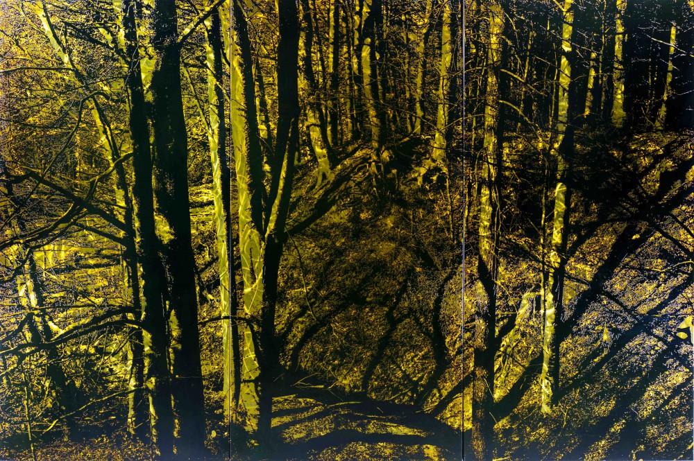 Burgwald, 2014, 3 tlg. 150x225cm, Übermalter Reliefdruck auf Metal