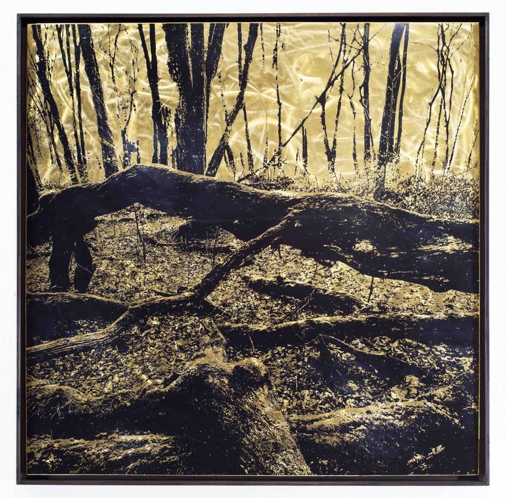 Querstamm, 2015, 80x80cm, Übermalter Reliefdruck auf Messing Gerahmt