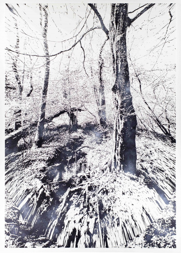 Einbaum, 2015, 200x140cm, Mischtechnik auf LW